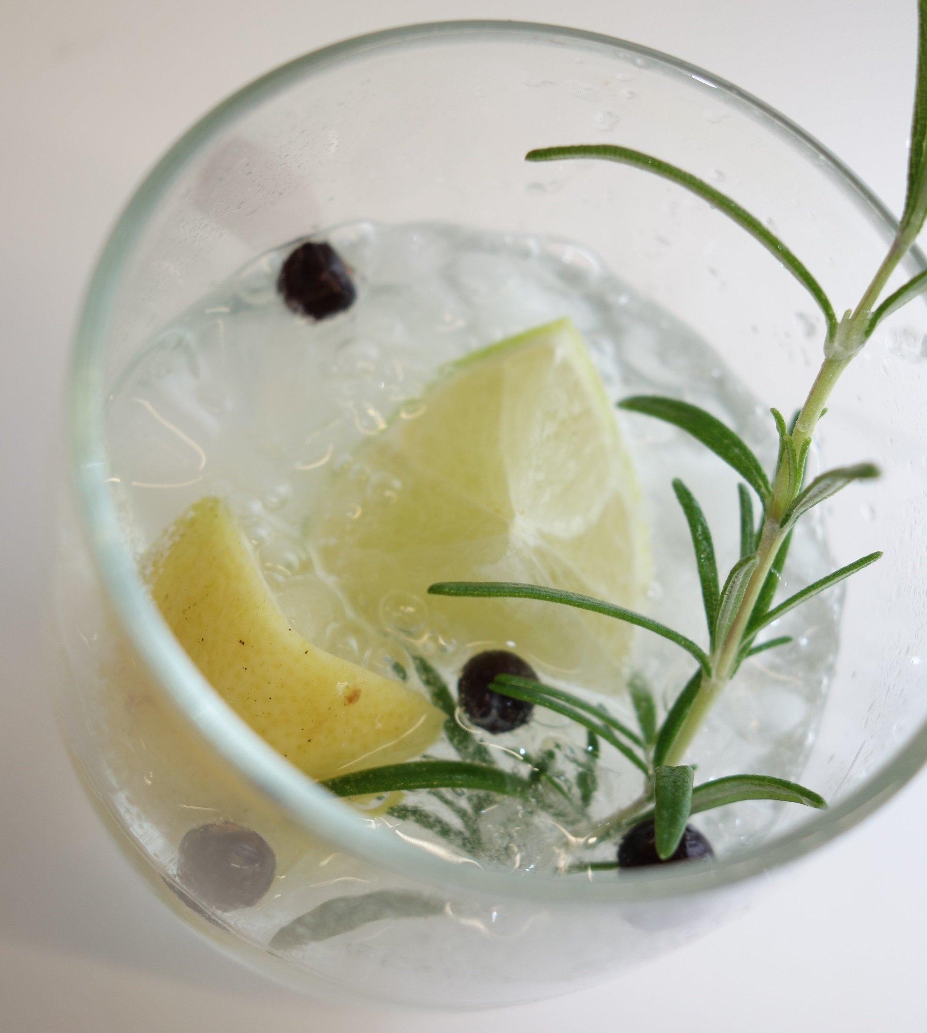 DSC00837 1 - Pimp your Gin! Eine Gin-Bar für die Feier