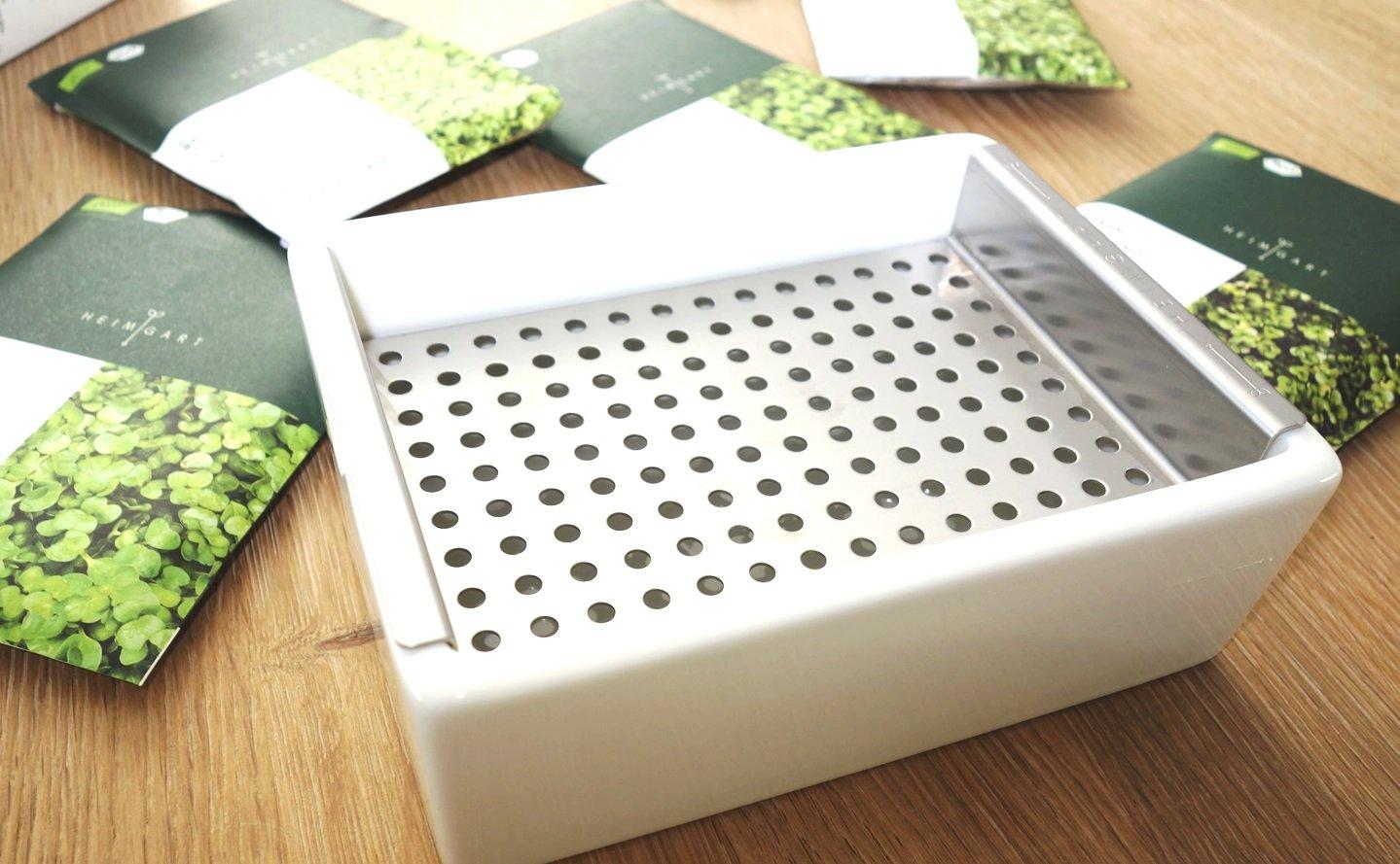 DSC01253 - Microgreens selber anbauen und Superfood einfach züchten