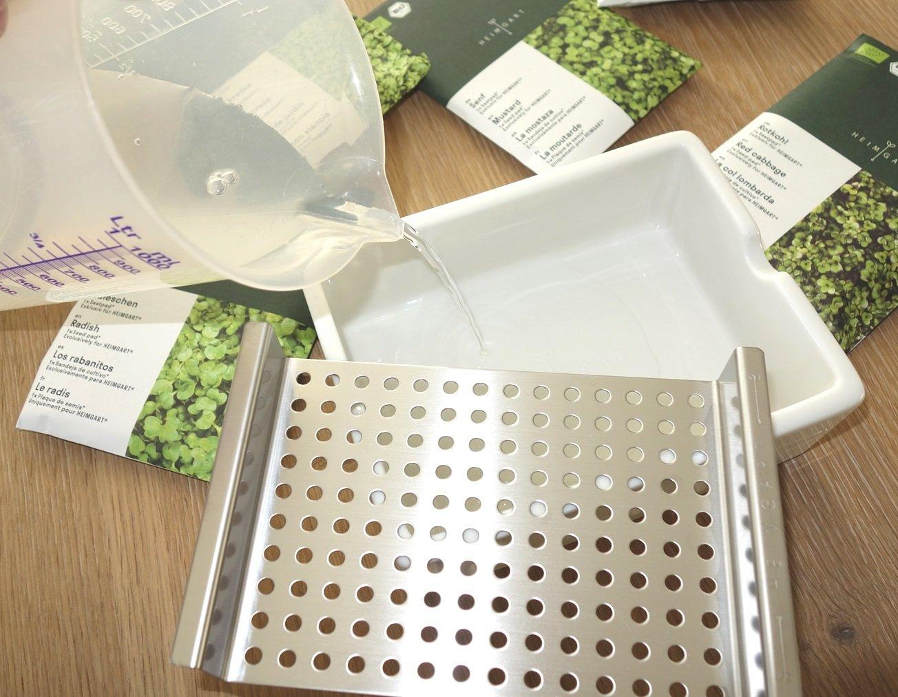 DSC01256 - Microgreens selber anbauen und Superfood einfach züchten