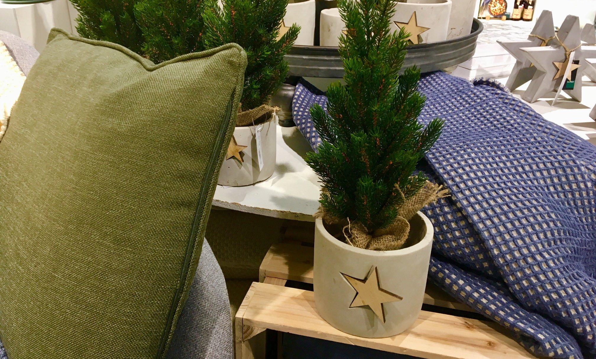 Foto 02.11.17 18 58 49 - Ist den schon Weihnachten? In den Läden weihnachtet es schon so....