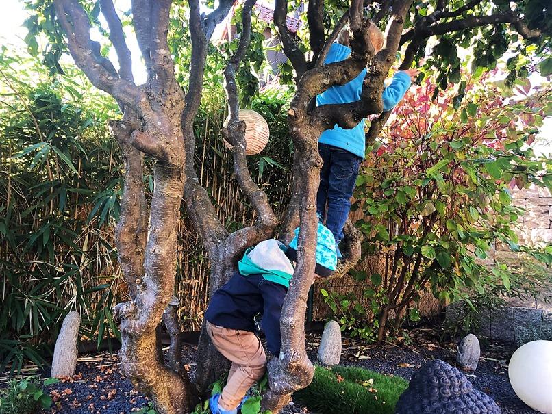 Foto 04.10.18 19 50 43 - 10 Dinge, die ihr im Herbst mit eurem Kind unternehmen könnt