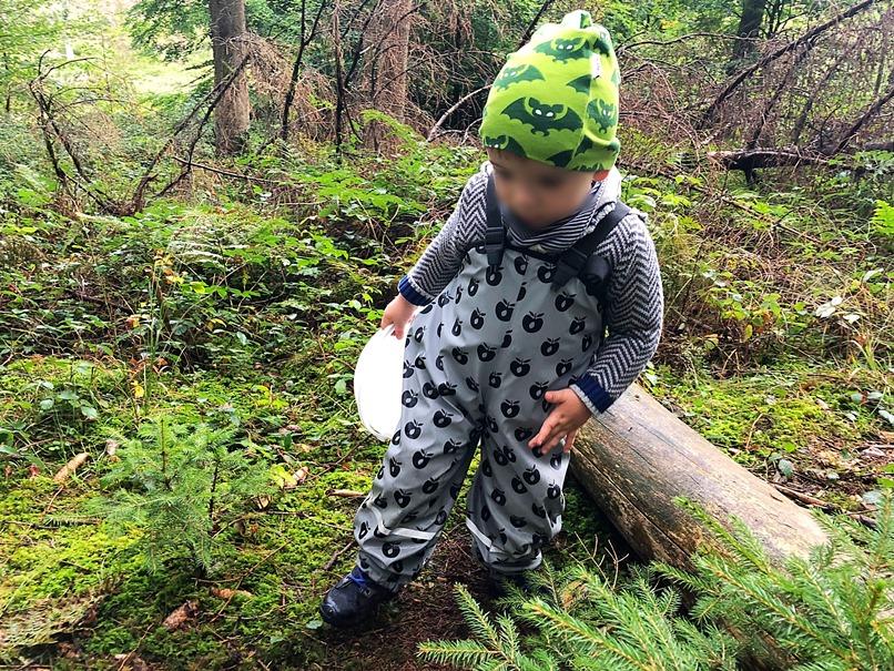Foto 23.09.18 09 53 30 - 10 Dinge, die ihr im Herbst mit eurem Kind unternehmen könnt