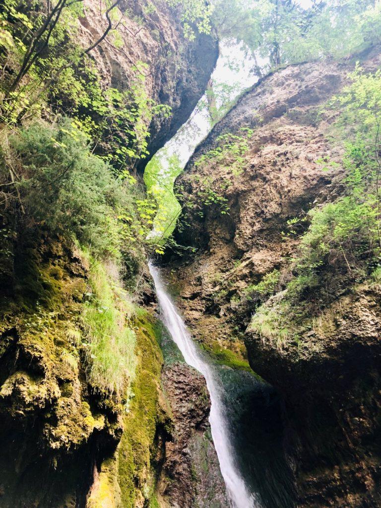 Foto 26.07.19 15 12 57 768x1024 - Ausflugstipp Sonthofen: Hinanger Wasserfall