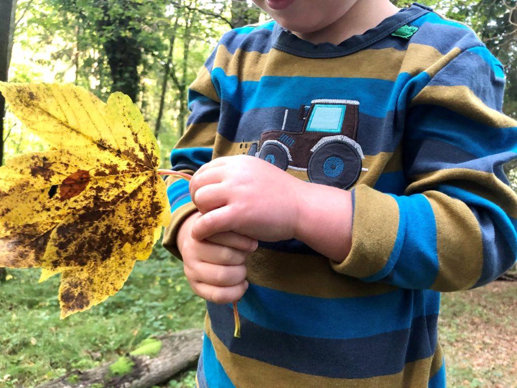 Foto 11.10.19 08 58 27 1024x768 - Bunt in den Herbst - Neues von Fred´s World by Green Cotton