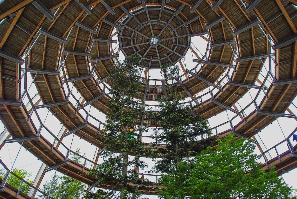 Bayerischer Wald 3 1024x685 - Werbung | Wanderparadies Bayerischer Wald