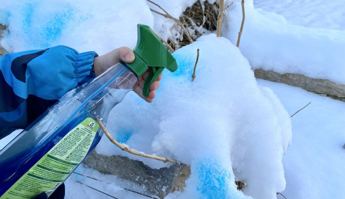 Schnee färben mit Kindern – toller Spaß im Winter