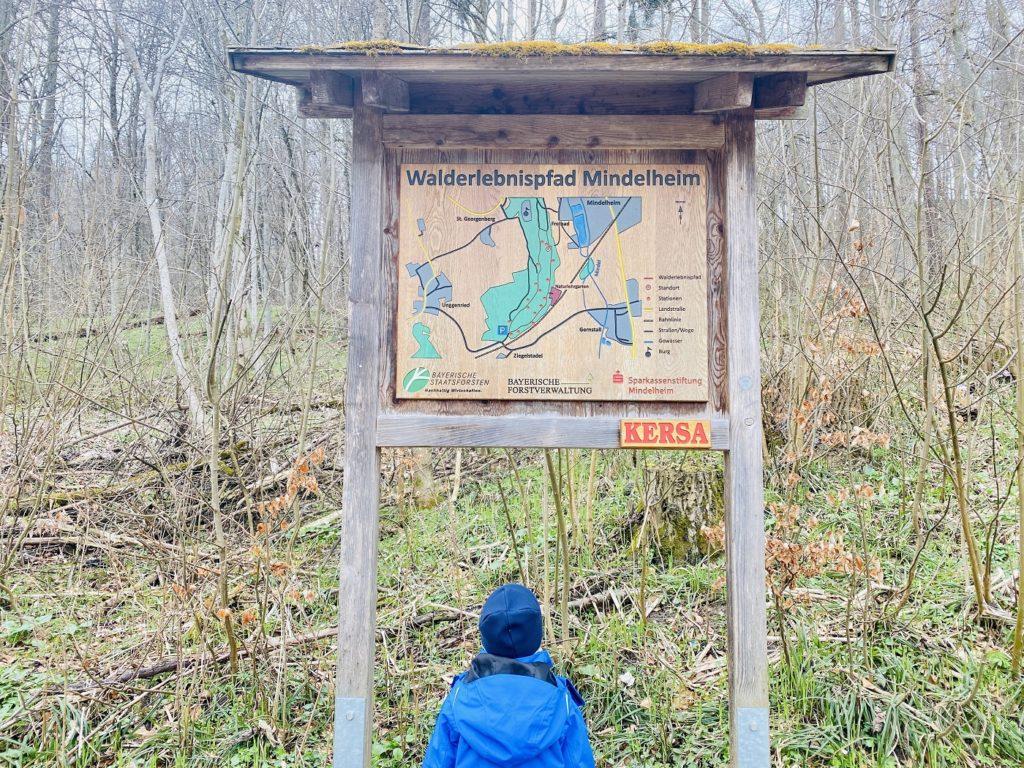 Walderlebnispfad Mindelheim 1024x768 - Ausflugtipp Allgäu mit Kind: Naturlehrgarten Mindelheim und Mindelburg