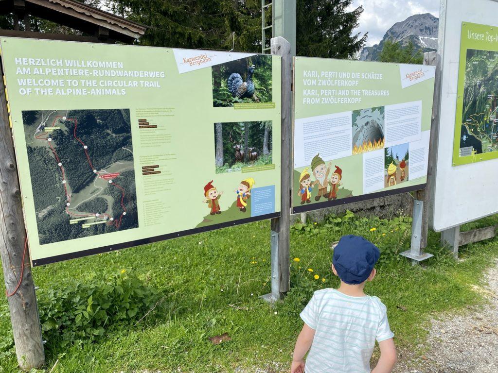 Alpentiere Rundwanderweg Karwendel 2 1024x768 - Ausflugstipp Achensee: Alpentiere Rundwanderweg ab Bergstation Karwendelbergbahn