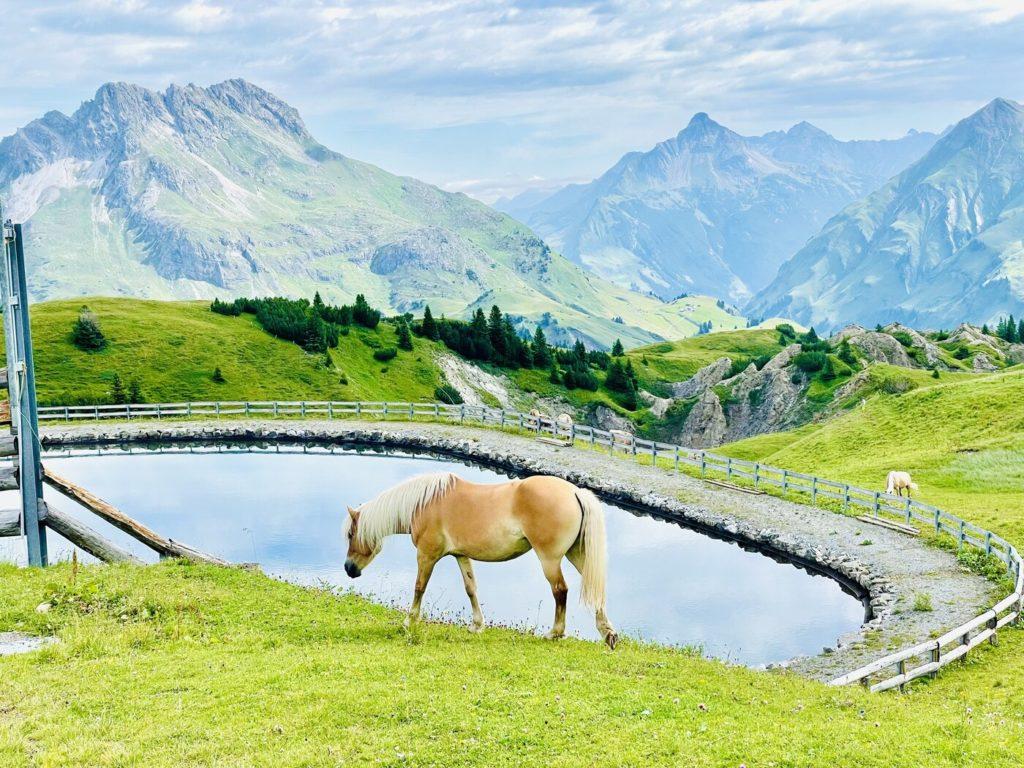 Lech Zuers Familienurlaub 4 1024x768 - Ausflugstipps Familien Lech Zürs am Arlberg