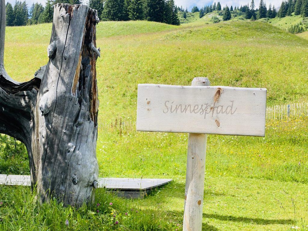 Sinnespfad Oberlech 2 1024x768 - Ausflugstipps Familien Lech Zürs am Arlberg