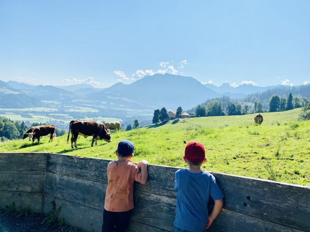 Hocheck Oberaudorf 9 1024x768 - Ausflugstipp Familie in Oberbayern: Hocheck Erlebnisberg Oberaudorf